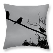 Leo, The Hawk Is Two Doors Down Throw Pillow