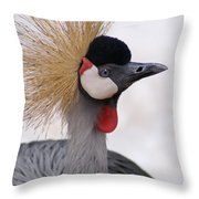 The Headress Crowned Crane Throw Pillow