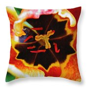 The Heart Of The Matter 2 Throw Pillow