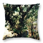 The Hidden Grave Throw Pillow