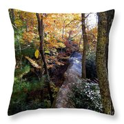 The Hidden Log Rock Throw Pillow