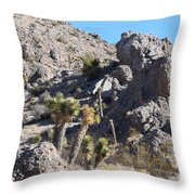 Rocky The Gentle Giant Throw Pillow