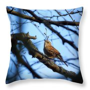 The Hiding Singer. Dunnock Throw Pillow