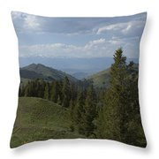 The High Road Throw Pillow