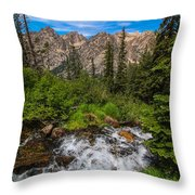 The Hike Down Throw Pillow