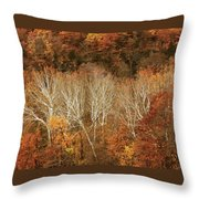 The Hills In Autumn Throw Pillow