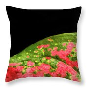 The Hills Of Mars Throw Pillow