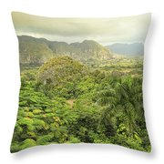 The Hills Of Vinales Throw Pillow