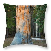 The Hobbit Home Throw Pillow