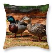 The Honeymooners - Mallard Ducks  Throw Pillow