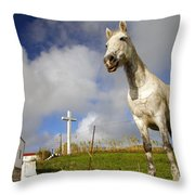 The Horse And The Chapel Throw Pillow