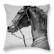 The Horse Throw Pillow by Harvie Brown