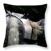 The Horses Of Mackinac Island Michigan 04 Throw Pillow