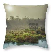 The Horton Plains. Sunrise Throw Pillow