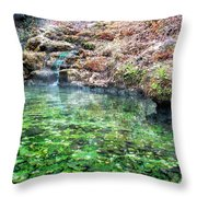 The Hot Springs In Hot Springs Arkansas Throw Pillow