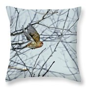 The House Finch In-flight Throw Pillow