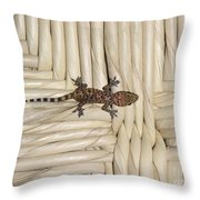 The House Guest Throw Pillow
