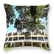 The House Pete Built - Pano Digital Painting Throw Pillow