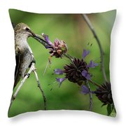 The Hummer  Throw Pillow