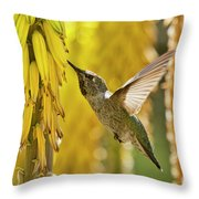 The Hummingbird And The Yellow Aloe  Throw Pillow