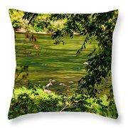 The Hunter - Paint Throw Pillow