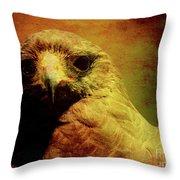 The Hunter . Portrait Of A Hawk . Texture . 40d7877 Throw Pillow