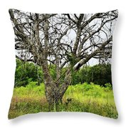 The Hunting Tree Throw Pillow