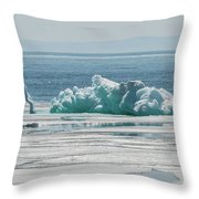 The Ice Elephant Of Silver Islet Throw Pillow