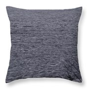 The Ice Float Throw Pillow