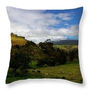 The Inca-canari Ruins At Ingapirca V Throw Pillow