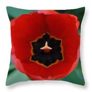 The Inside Throw Pillow