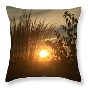 The Intimancy Of My Presence Throw Pillow