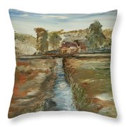 The Irrigation Canal Throw Pillow