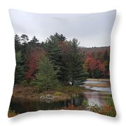 The Island Of Pines  Throw Pillow