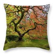 The Japanese Maple Tree In Spring Throw Pillow