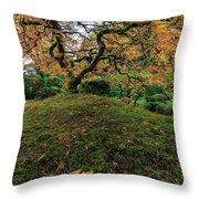 The Japanese Maple Tree In Autumn 2016 Throw Pillow
