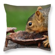 The Jelly Theif  Throw Pillow