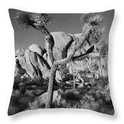 The Joshua Tree Throw Pillow