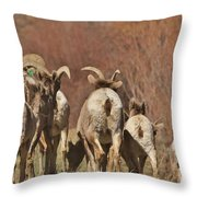 The Journey 2 Throw Pillow