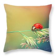 The Journey Ahead Throw Pillow