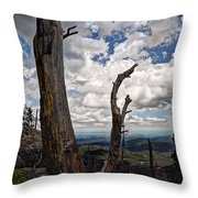 The Journey To Harney Peak Throw Pillow