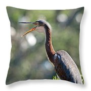 The Joy Of Living Throw Pillow