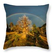 The Juniper's Last Crown Throw Pillow