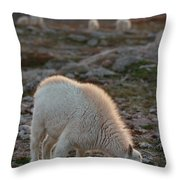 The Kids Table Throw Pillow
