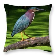 The King Of The Log.... Throw Pillow