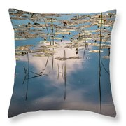 The Kingdom Of The Crucian Carp Throw Pillow