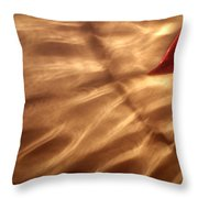 The Kiss Of The Sun Throw Pillow