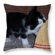 The Kitten And The Broom Throw Pillow