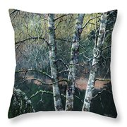 The Kubota Three Throw Pillow