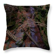 The Ladders Throw Pillow